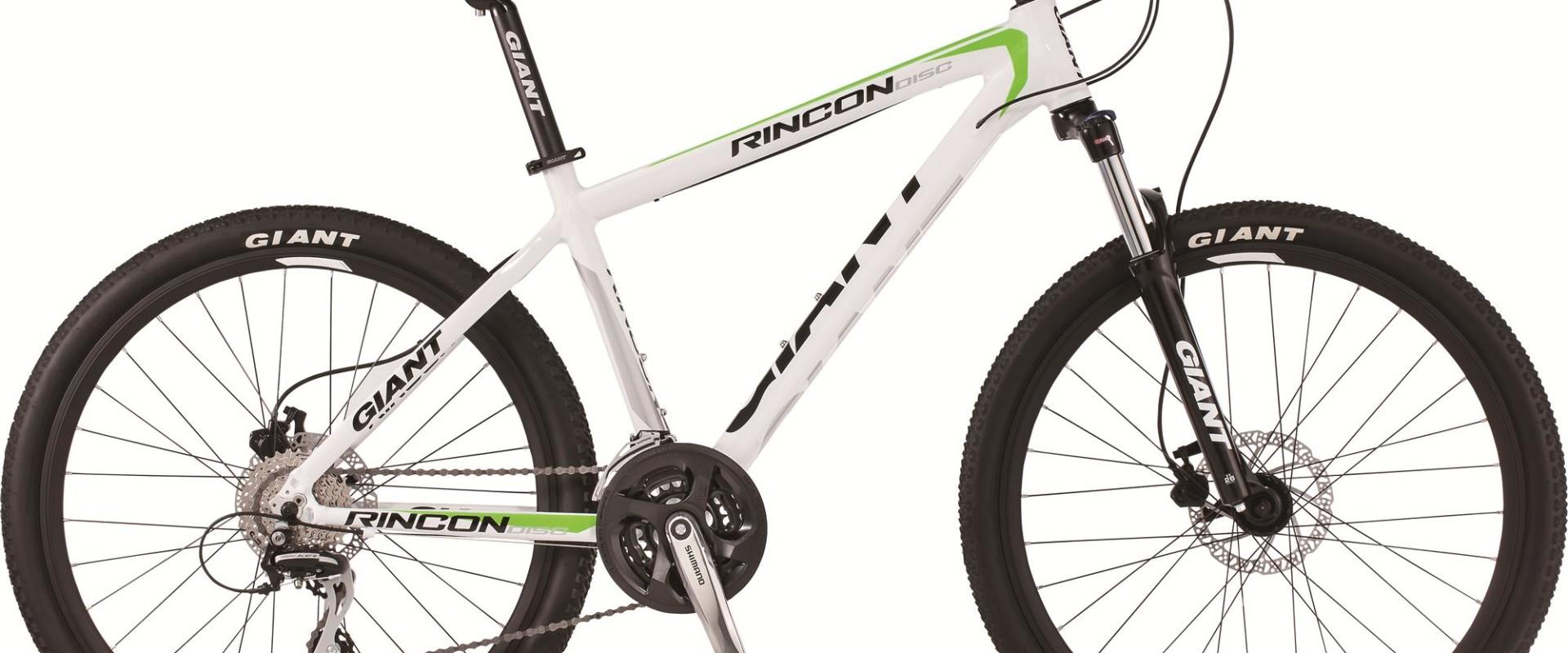 Giant Rincon Disc 2016